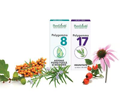 Tratamentul bioelectromagnetic – metode de detoxifiere și deparazitare - Transilvania Healing